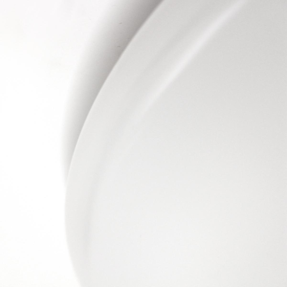 Lampenlux LED Deckenlampe Deckenleuchte Alvaro-Led Glasschirm Opal Abdeckung Ø: 37cm